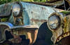 Siblings (garshna) Tags: relics rusty buick headlights moss mold mildew fungus abandoned scraped scratched junk junked