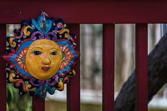 Happy Fence Friday (Jims_photos) Tags: texas unitedstates outdoor outside oldfence adobelightroom adobephotoshop shadows daytime daytimefence fencefriday happyfencefriday jimallen jimsphotos jimsphotoswimberleytexas lightroom nopeople nikond750