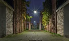 Vegelinstraat Leeuwarden op vrijdag avond