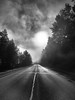 And into the forest I go, to lose my mind and find my soul... (Dev WR) Tags: alaska usa road fog monochrom bw blackandwhite wilderness trip roadtrip lighting landscape journey weather