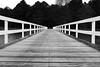 Bridge Over Pond (david.john.lee) Tags: canberra australia black white bridge water lake