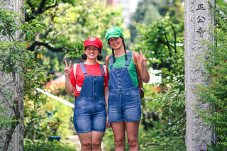 Mario & Luigi tourists