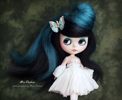 A visitor from heaven <3 (pure_embers) Tags: pure embers blythe doll dolls laura england uk custom gbaby beamer miss daphne missdaphne takara neo hair black teal mohair reroot girl photography dark atelierneon white dress beautiful visitor