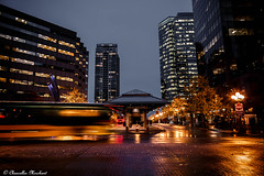 A Moody Night at the Bellevue Transit Center (Endless Reflection Photography) Tags: bellevuetransitcenter bellevuetransit bellevuewashington bellevue bellevueful bellevuedowntown downtownbellevue soundtransit metroseattle transitcenter bus moody moodyphotography moodybellevue bellevuemoody bellevuerain bellevuereflection bellevuehistory bellevuephotographer seattlephotographer seattle seattleseastside visitbellevue bellevuecollection cityofbellevue lincolnsquareexpansion whotelbellevue microsoftbellevue microsoft bellevueskyline endlessreflectionphotography cmerchant1 ereflectionphotos bellevuenights nightphotography longexposure motionblur bellevueautumn lakewashington streetmeetwa bellevuemagicseason