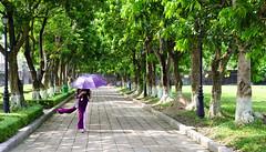 Hue - Walking in Imperial City (Valdy71) Tags: vietnam hue imperial citadel city travel woman nikon