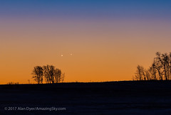 Venus and Jupiter Rising in Close Conjunction (Amazing Sky Photography) Tags: 2017 conjunction jupiter november13 sunrise twilight venus close dawn planets prairie trees