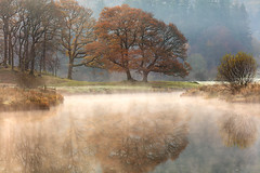 Reward (David Ball Landscape Photography) Tags: lakedistrict landscape landscapes photography mist fog foggy frost frozen water river reflections reflection travel trees light autumn beautiful uk outdoors davidballlandscapephotography wwwdavidballphotographycouk 2017 canon canon5dsr riverbrathay