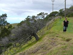 2008-09-17 13-03-47 (beat@bru.ch) Tags: geo:lat=2007059490 geo:lon=15575997500 geotagged kamuela kawaihae vereinigtestaaten hawaii