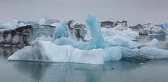 Icebergs and seal, Jökulsárlón glacial lagoon, Vatnajökull National Park, Southeastern Iceland. (GregoireDubois) Tags: red iceland 2017 nature