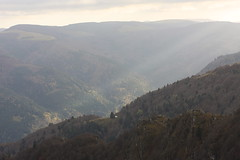 Vallee vosgienne (theodore dardenne) Tags: vodges nature canon exterieur france landscape brume matin
