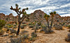 The Maze - Joshua Tree National Park (Six Sigma Man (2.900.000 views)) Tags: joshuatreenationalpark joshuatree desert california nikon nikond3200