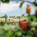 Apple Picking @ Cody's Farm & Orchard