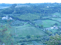 Orvieto (michael kogan) Tags: landscape greenhill italy umbria trees grass medieval abbey forest
