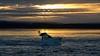 Going Home (Tilney Gardner) Tags: sunset sandbanks dorset boat southcoast clouds