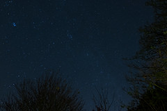 Quick One (Ethan Forrest) Tags: night milkyway garden quick fujifilm