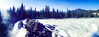 Athabasca Falls #2 - Alberta, Canada (阿爾伯塔, 加拿大) (dlau Photography) Tags: alberta canada 阿爾伯塔 加拿大 athabascafalls falls 阿薩巴斯卡瀑布 瀑布 阿萨巴斯卡瀑布 阿尔伯塔 travel tourist vacation visitor people lifestyle life style sightseeing 游览 遊覽 trip 旅遊 旅游 local 当地 當地 city 城市 urban tour scenery 风景 風景 weather 天氣 天气 landscape nature 大自然 攝影發燒友