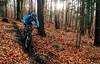 November mood (Hagbard_) Tags: vielsackantrieb gang mtb mountainbike mtblove velove wild fun friends outside outdoor sport enduro enduromountaibike trail trailriding keepitwild rideyourbike biker wood wald nature natur crew