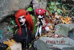 .: Loki & Fenris :. (.: Miho :.) Tags: pullip pullipdoll dal daldoll obitsu parabox redhair groove groovedoll junplanning nenndolls