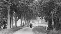 Still going..... (andzwe) Tags: fietstocht reza blackandwhite zwartwit netherlands nederland monochrome dutch bike fiets dmcgh4 panasonicgh4 panasonicdmcgh4 panasoniclumixdmcgh4