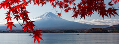 Mt. Fuji & Lake Kawaguchi, Japan (flygrl67) Tags: asia fuji fujikawaguchiko fujisan japan kawaguchiko lake lakekawaguchi michelle mt torresgrant autumn boat color fall leaves maple momiji photography red vacation water volcano volcanic mystic awesome snow snowy peak leaf fishermen fishing colorful clouds fisherman