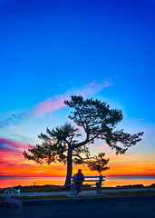 sitting and enjoying a sunrise at Woodmont (Singing With Light) Tags: 2017alpha6500 22nd bayviewbeach milford mirrorless october singingwithlight sonya6500 morningwalk photography singingwithlightphotography sony sunrise woodmontbeach