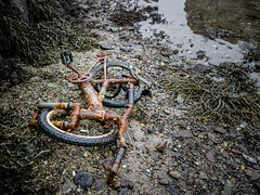 """""""Abandoned bike"""" (Terje Helberg Photography) Tags: forfall abandoned bicycle bike coast decay neglected old polution rust sea unattended water wheel wheels"""