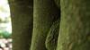 P1090028 (SunThroughEyelids) Tags: blue beautiful beach bridge biking art animal landscape lake water nature dark car sea orange stars travelling traveller vintage photograph north light night photography tunnel city pretty forest sunset
