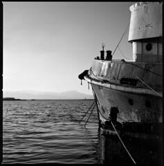 the old tug (ukke2011) Tags: hasselblad503cw planarcfe8028 adoxcms selfdeveloping adotech film pellicola 6x6 square 120 bw mediumformat harbor porto tugboat rimorchiatore