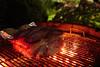 [056/365] (massi2403) Tags: day056 weber barbecue pork loin bbq