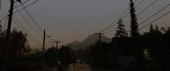 Sunrise (Brandon ProjectZ) Tags: watchdogs chicago windy overcast rain sunrise trees mountain roads natural lighting
