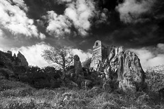 Life as a hermit (Christian Hacker) Tags: rochechapel blackandwhite mono monochrome bw landscape bodminmoor cornwall cornish dark canon eos50d tamron 1750mm clouds tree grass granite geology ruin ruined rocky stones stone rocks outcrops rugged abandonded historic