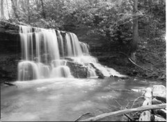 img345 (wolffriend333) Tags: mamiya6451000s aristaedu 120 rollfilm blackandwhite ilfotecddx homedeveloped waterfalls laruelrunpark hawkinscounty tennessee