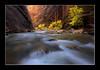 _DSC0162-702 (Viper 78) Tags: lowerantelopecanyon narrows zionnationalpark