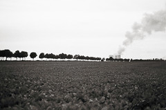 Lost in land (Carlos Lacano) Tags: bw black white landscape trees rommerskirchen carlos lacano germany canon at1 50mm 20