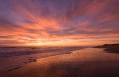 A bird and a sunrise (Theresa Rasmussen) Tags: outerbanks obx ocean outer banks sunrise pier north carolina longexposure northcarolina nagshead fall sunrisepink beach