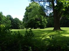 Lawn - Ekenstein (Henk van der Eijk) Tags: ekenstein lucaspietersroodbaard willemalberdavanekenstein tjamsweer groningen