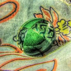 Added Button (clarkcg photography) Tags: button green clear design decorative sewn placed textile buttonandbows macromondays
