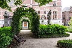Arcadia (Nachett) Tags: amsterdam holland holanda paísesbajos netherlands niederlande garden garten green grün verde
