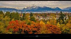 Fall or winter in Vancouver, BC, Canada? (Ann Badjura Photography) Tags: queenelizabethpark littlemountain vancouver britishcolumbia canada bc beautifulbc miss604 604now 24hrvancouver georgiastraight insidevancouver colourfulvancouver photonewsgallery ctvphotos fall autumn winter snow mountains leaves annbadjura photography pnw downtownvancouver discoverpnw pacificnorthwest pacificnw city urban scenery landscape westcoast westcanada vancity vancitybuzz