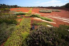 Cranbourne RBG Nov 2017 001 (Graeme Butler) Tags: water landscape history gardens australianplants architecture victoria australia