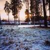 Solig frostig dag ~ sunny frosty day  ❄❄❄❄  * * * #Östersund #Jämtland #söndag #12november2017 #Sverige #sweden #natur #nature  #skandinavien #ig_sverige #picoftheday #bestoftheday #frost #europe_gallery #europa (Per Ola Wiberg ~ powi is back) Tags: instagramapp square squareformat iphoneography uploaded:by=instagram mayfair