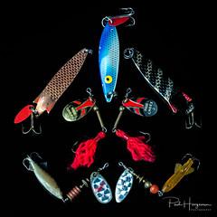 Catface (PaulHoo) Tags: cat face studio still color fun humor animal art symmetry nikon d750 fishing gear equipment spinner bate