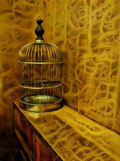 The Empty Birdcage