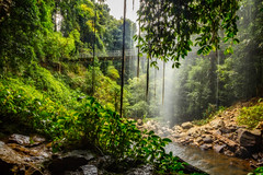 Cool Shower (*ScottyO*) Tags: dorrigo crystalshowerfalls nsw newsouthwales australia waterfallway waterfall water wet spray rainforest forest tropical ferns trees leaves nature outdoor landscape bridge green pond pool rocks clouds sky