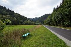 Linie (dreptacz) Tags: polska krajobraz góry trawa kwiaty ławka sony slt zielony niebo drzewa lustrzanka