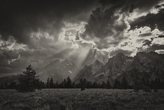 Shafts (Tony Hochstetler) Tags: nikon nikon2870mmf28 d800e tetons grandtetonsnationalpark wyoming bw blackandwhite landscape storm mountains trees horizontal