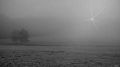 """Je voyais passer des ombres. Et quand je les appelais. Comme dans un autre monde, Le brouillard les avalait. • <a style=""""font-size:0.8em;"""" href=""""http://www.flickr.com/photos/151833726@N07/37598659025/"""" target=""""_blank"""">View on Flickr</a>"""