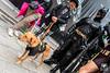 Batdog (andrea.prave) Tags: luccacomics luccacomicsgames luccacomics2017 luccacomicsgames2017 2017 lucca luccacg luccacg17 luccacg2017 cosplayer cosplay costumi コスプレ batman dccomics batdog dog