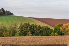 Roštínské lány (jirka.zapalka) Tags: chriby landscape field trees forest czech rostin autumn