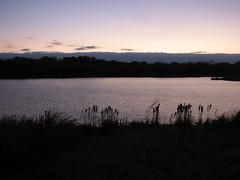 Dusk, Oak Point Park, Plano, Texas (gurdonark) Tags: pond oak point park dusk sunset horizon plano texas